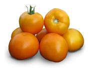 Семена томата Aisan (Китано)