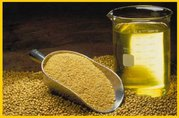 Соевое масло и Жмых высокого качества